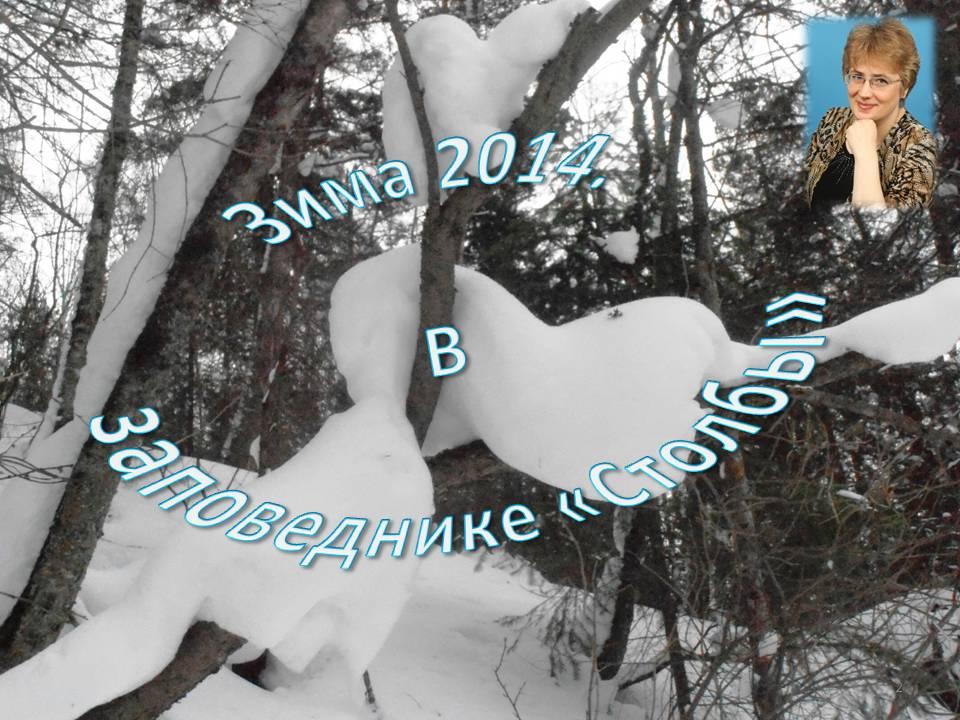 Зима 2014. Столбы.