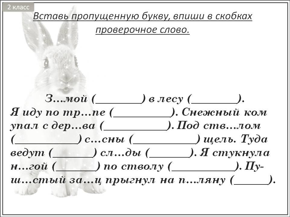 Карточки по русскому языку 2 класс