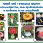 съедобный и несъедобный гриб