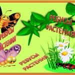 растения ребусы