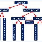 фонетический разбор слова