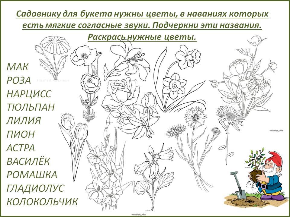Цветы фонетический разбор слова