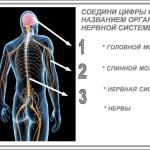 2015-07-13 01-17-26 Без имени 1 - OpenOffice.org Impress