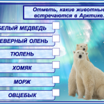 КАРТОЧКА №2. Арктика