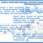 КАРТОЧКА №4. Арктика
